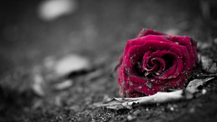 Trauer um Anna Norbury: Die britische Schauspielerin ist im Alter von nur 26 Jahren gestorben (Symbolbild). (Foto)
