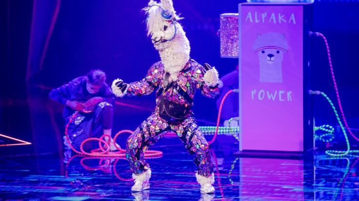 """Wer steckt bei """"The Masked Singer"""" unter der Alpaka-Maske? (Foto)"""