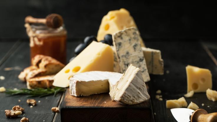Der Käse ist mit Bakterien verunreinigt.