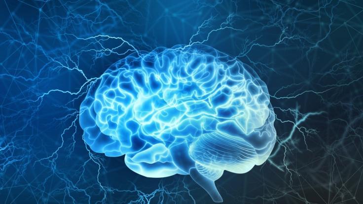 In Kanada stellt eine mysteriöse Hirnkrankheit Neurologen vor ein Rätsel. (Foto)