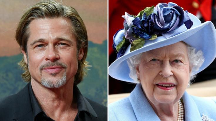 Brad Pitt und Angelina Jolie sind verwandt. (Foto)