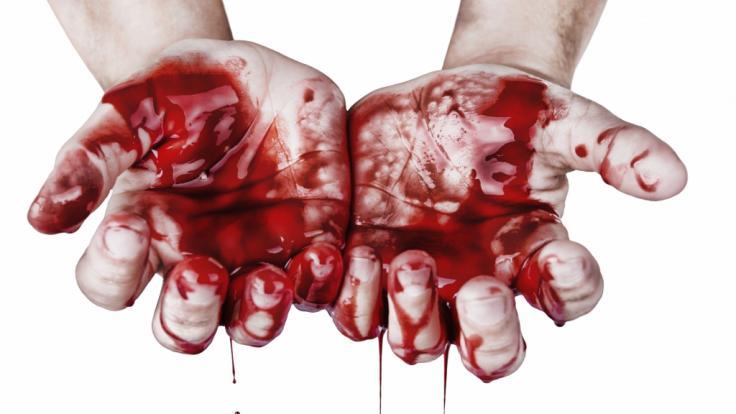 Nach einem Partystreit endete eine 37-Jährige aus St. Petersburg als zerstückelte Leiche im Wald (Symbolbild). (Foto)