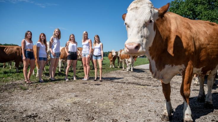 Bei diesen sexy Models wird das landwirtschaftliche Nutztier glatt zur Nebensache.