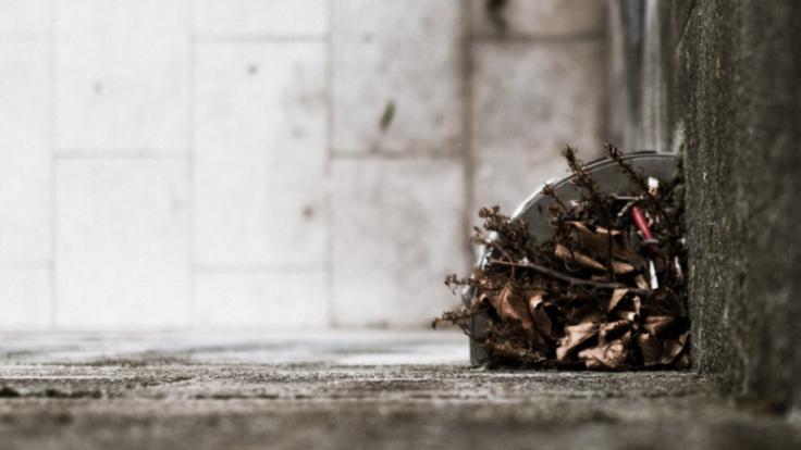 Eine verzweifelte Mutter hat ihr Baby in einem Müllschlucker entsorgt. (Foto)