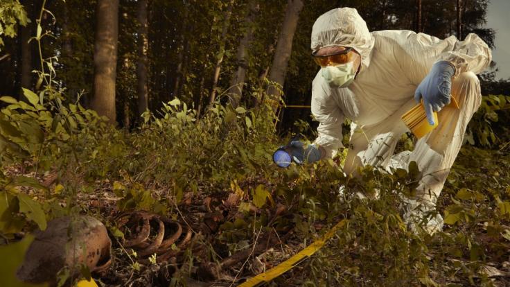 In Pankow wurden die Knochen eines Mannes gefunden. (Symbolfoto) (Foto)