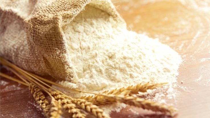 Ein Bio-Hersteller musste sein Mehl-Produkt wegen Salmonellenbelastung zurückrufen (Foto)