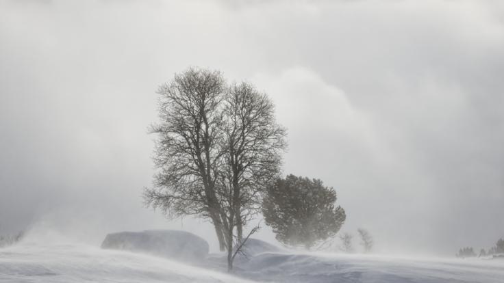 """Tief """"Martin"""" bringt kalte Luft nach Deutschland. (Foto)"""