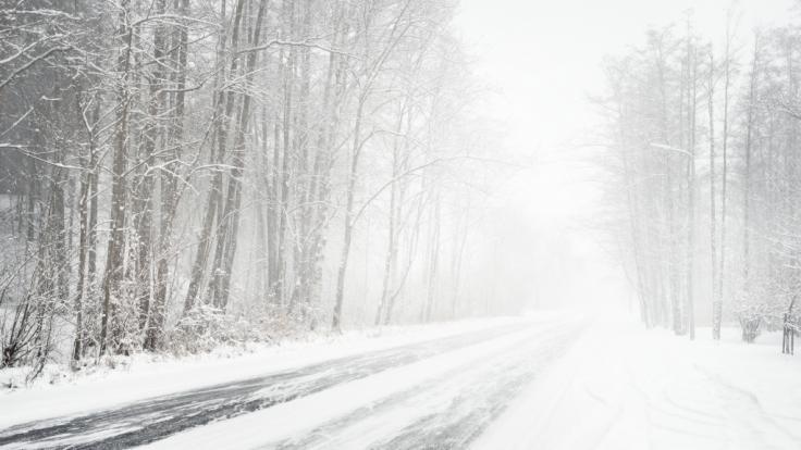 In einigen Teilen Nordeuropas droht ein Schneesturm. (Foto)