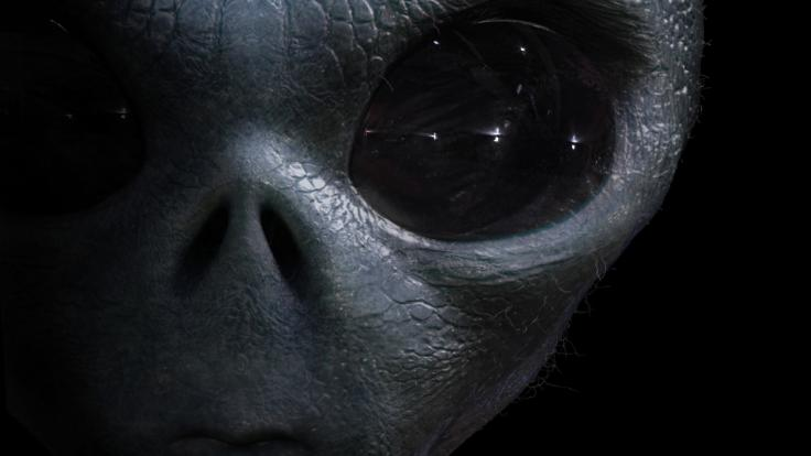 Im Kaukasus stießen Archäologen auf ein mysteriöses Skelett, das an ein Alien erinnerte (Symbolfoto). (Foto)
