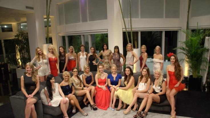 Noch 16 Kandidatinnen im Rennen: Einige haben Gewinner-Potential.