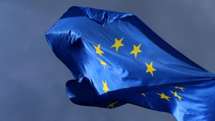 Ende Mai findet die Europawahl 2019 statt.