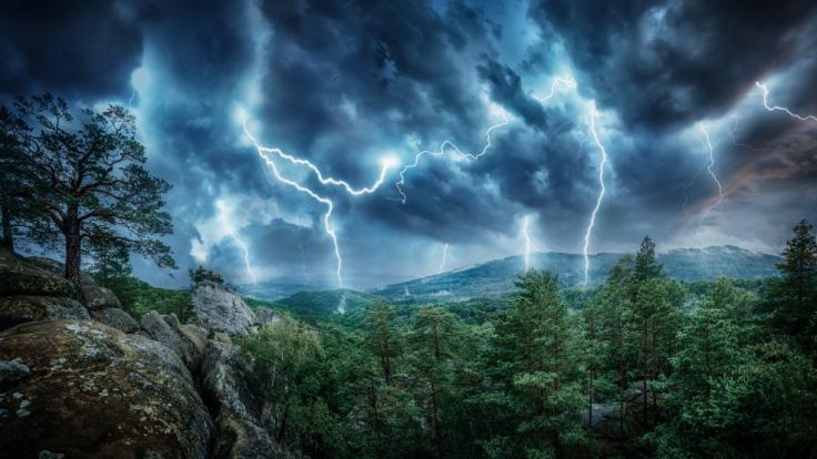 Ein Blitzeinschlag soll die Familie während ihrer Wanderung im Sierra National Forest ausgelöscht haben. (Foto)