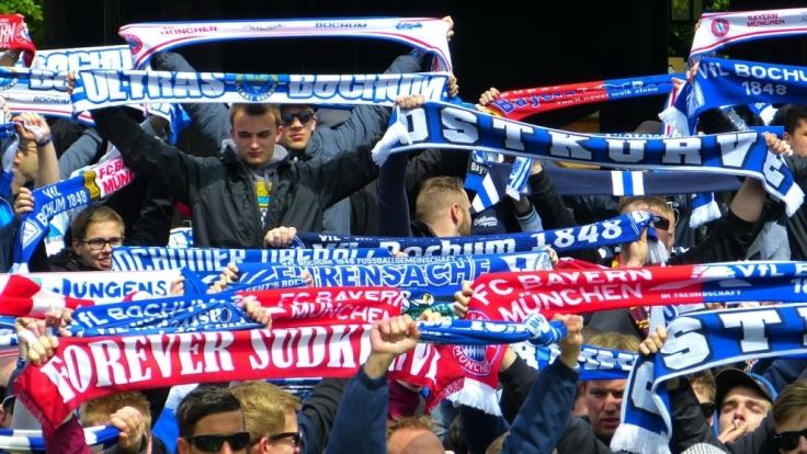 Ohne treue Fans wäre die Fußballwelt ein gutes Stück ärmer - doch die Fußballfans haben trotzdem kein Mitspracherecht bei der FIFA. (Foto)