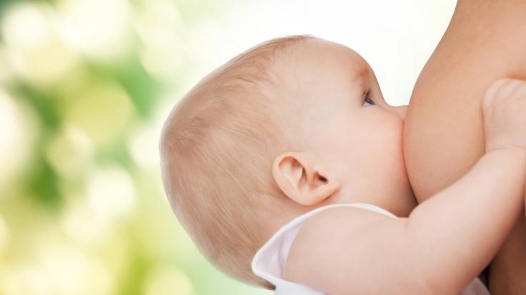 Weil sie nicht genug Muttermilch hatte, verdünnte die Mutter diese. (Foto)