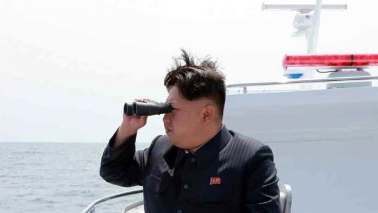 Kim Jong Un wollte auf Schildkrötenfarm Hummer essen. (Foto)