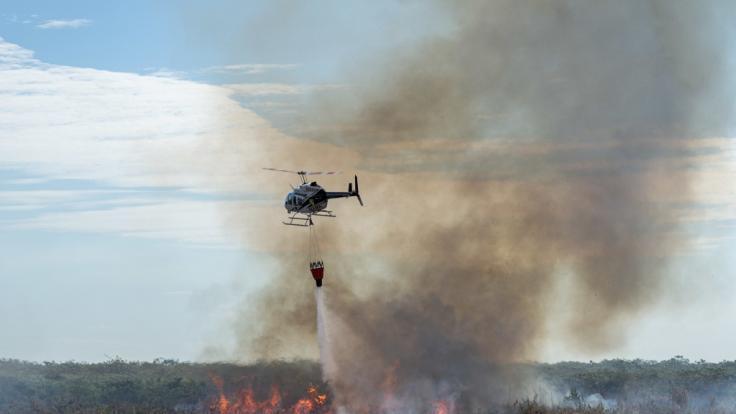 Ein Lösch-Hubschrauber fliegt über dem Amazonasgebiet.