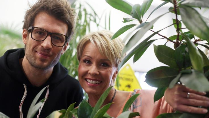 Daniel Hartwich und Sonja Zietlow moderieren wieder das Dschungelcamp 2019 - die Kandidaten hat RTL auch schon gefunden.