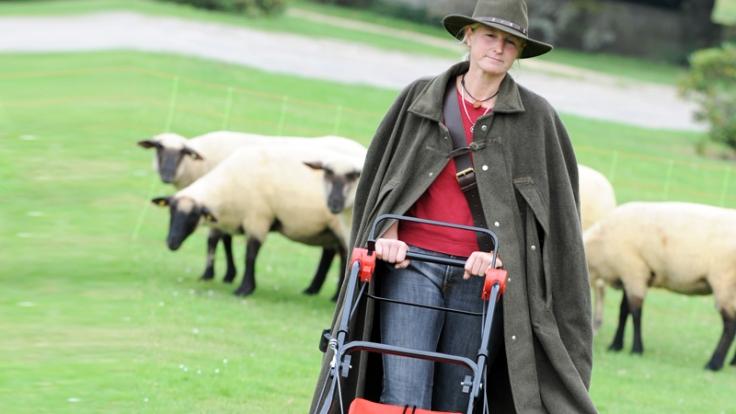 Diese Schäferin mäht Gras.Ein Indiz, dass Schafe keine guten Rasenmäher sind? (Foto)