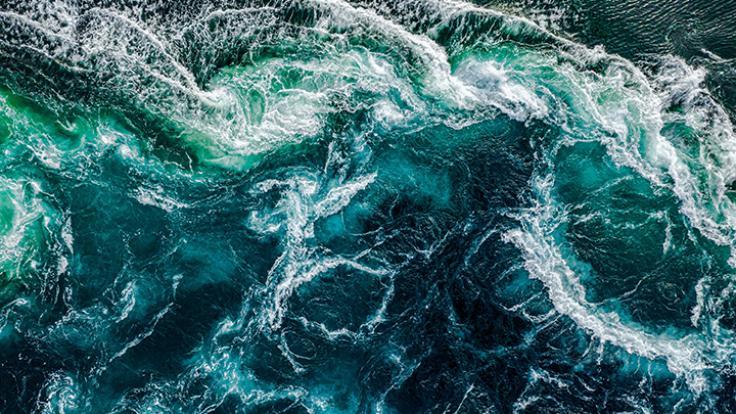 Die Zahl der Todeszonen in den Weltmeeren steigt dramatisch. (Foto)