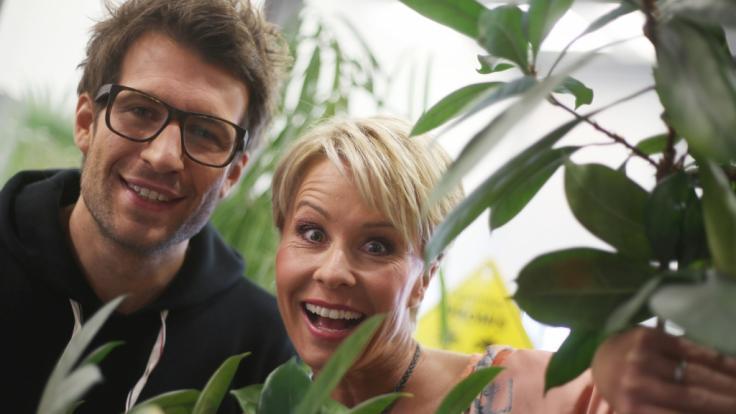 """Sonja Zietlow und Daniel Hartwich, Moderatoren der RTL-Show """"Ich bin ein Star - Holt mich hier raus!"""" (Foto)"""