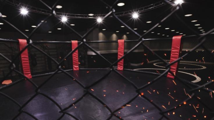 So sehen Sie UFC 266 im Live-Stream und TV. (Foto)