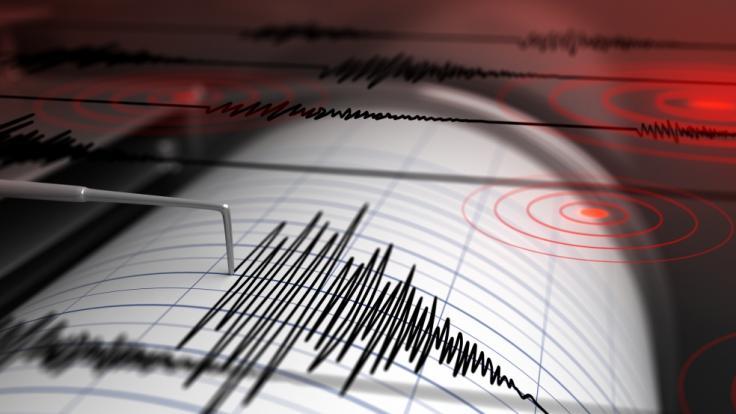 Eine Erdbebenserie erschütterte die kanadische Küste. (Foto)