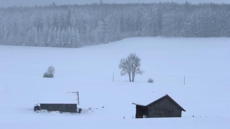 erschneit ist die Landschaft bei Friesenried. Der Winter hat weite Teile Bayerns weiter fest im Griff.