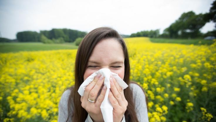 Die Saison für Pollenallergiker hat noch lange kein Ende. Ein