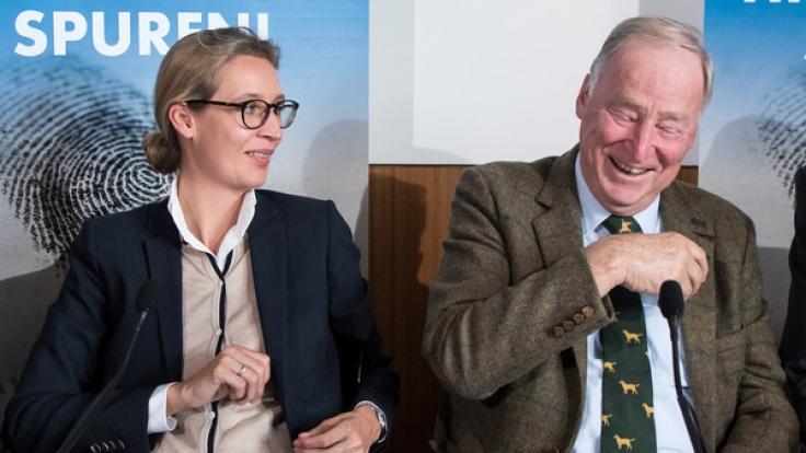Alice Weidel und Alexander Gauland sind die Spitzenkandidaten der AfD. (Foto)