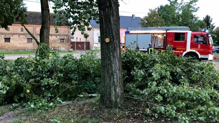 Ein Tornado hat schwere Sturmschäden im Dorf Klaistow (Brandenburg) angerichtet.