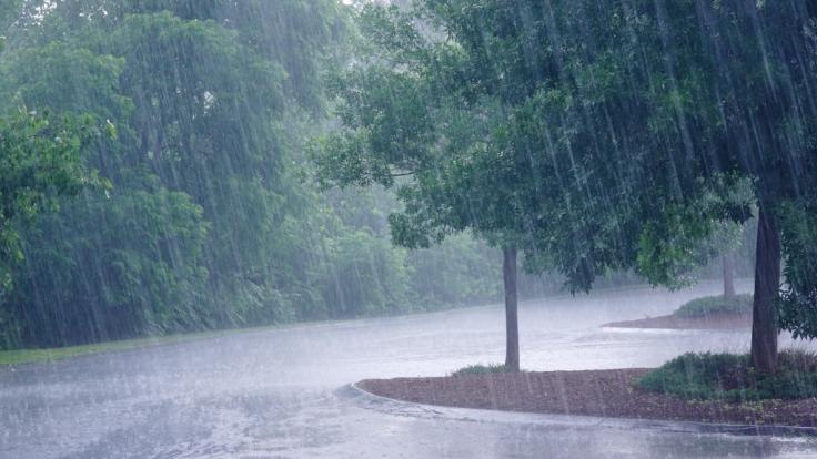 Wettervorhersage: Es wird regnerisch. (Symbolbild) (Foto)