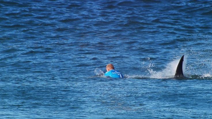 Der Surfer Mick Fanning entkam im Juli während eines Wettkampfes in Süd Afrika nur knapp einem weißen Hai und damit wohl dem sicheren Tod. (Foto)