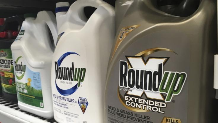Das Unkrautvernichtungsmittel Roundup von Monsanto kommt Bayer teuer zu stehen.