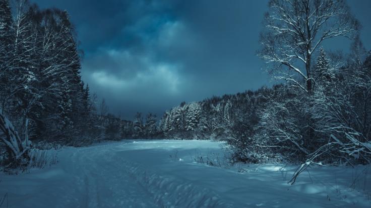 In Russland sind drei kleine Kinder von ihrer Mutter bei klirrender Kälte im Wald ausgesetzt worden (Symbolbild).