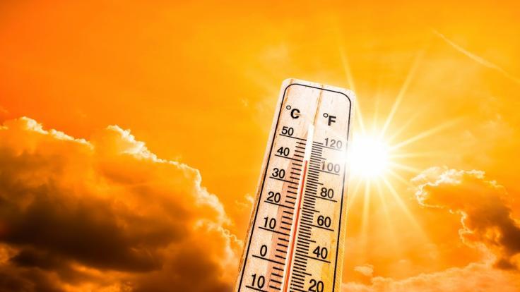 Der Deutsche Wetterdienst warnt vor starker Wärmebelastung. (Foto)