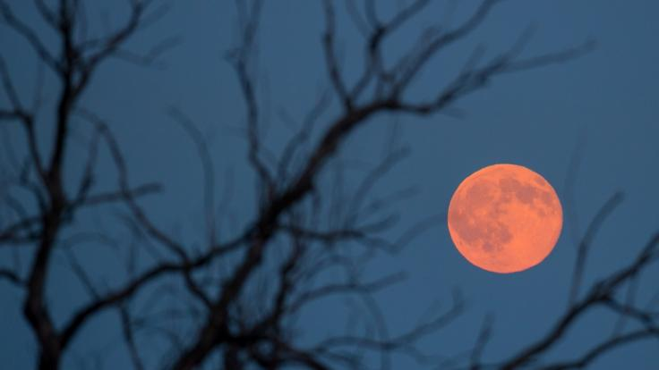 Der Vollmond im Juni ist nicht nur rot, er heißt auch noch Erdbeermond. (Foto)