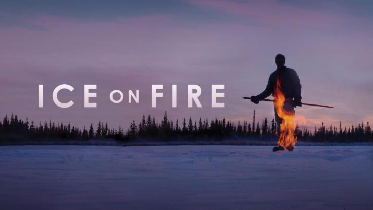 """Die neue Leonardo DiCaprio Doku """"Ice on Fire"""" ist in Deutschland verfügbar. (Foto)"""
