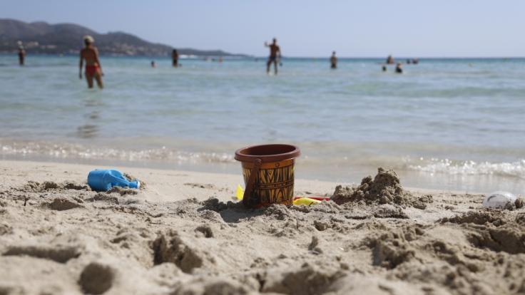 Auf Mallorca wurde der Ratten-Lungenwurm entdeckt. (Foto)