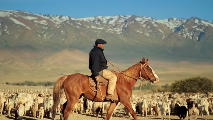 Patagonien bei Arte (Foto)