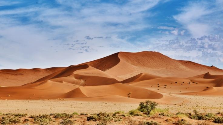 Haben wir in Deutschland auch bald eine Sahara-Wüste? (Foto)