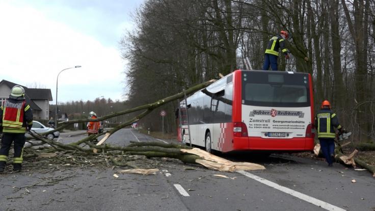 """Sturmtief """"Klaus"""" brachte jede Menge Chaos nach Deutschland. (Foto)"""