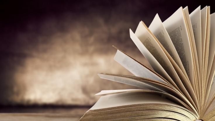 300 Jahre altes Buch mit Ufo-Abbildung entdeckt. (Foto)