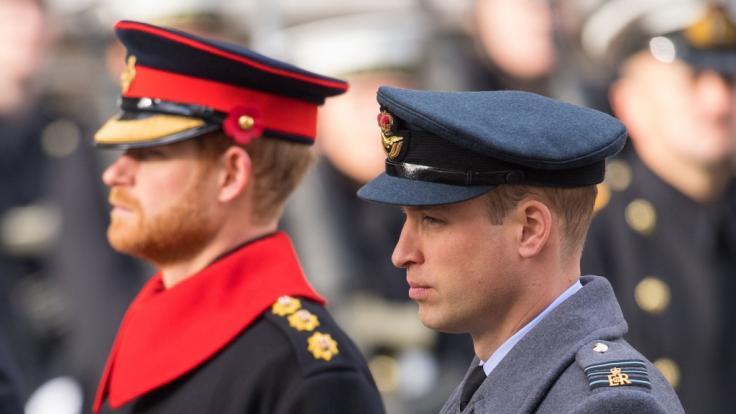 Prinz Harry und Prinz William haben Prinzessin Dianas Geld unter ihren Wohltätigkeitsorganisationen aufgeteilt. (Foto)