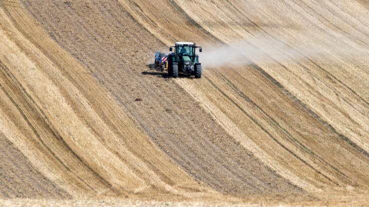 Eine Staubwolke zieht ein Traktor beim Striegeln auf einem abgeernteten Getreidefeld in Thüringen hinter sich her. (Foto)