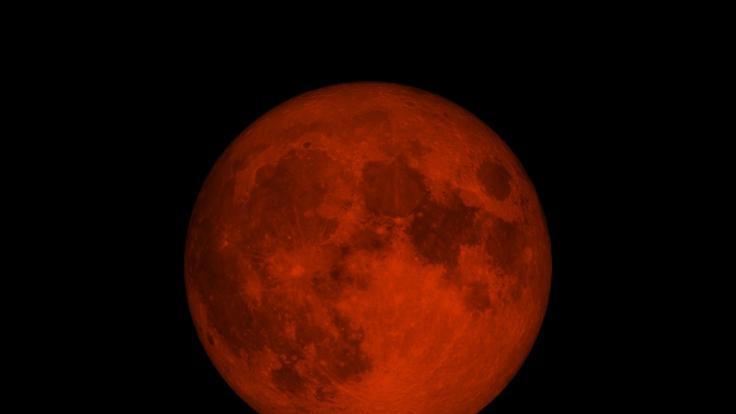 Hobbyastronomen dürfen sich im Mai auf eine totale Mondfinsternis freuen. (Foto)