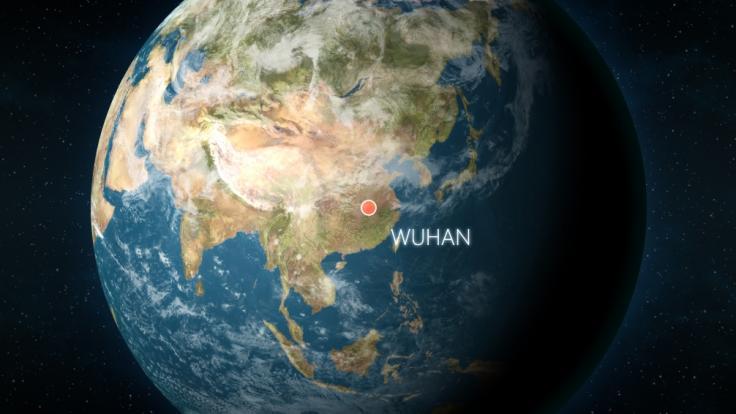 Wurde das Coronavirus in einem Wuhan-Labor entwickelt? (Foto)