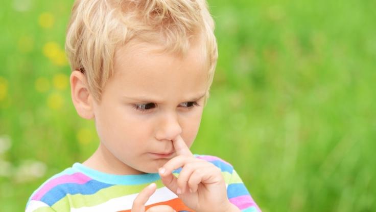 Schadet es, Popel zu essen?