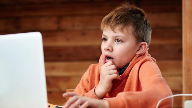 Ein Lehrer hat seinen Schülern beim Online-Unterricht ein Penis-Foto gezeigt. (Foto)
