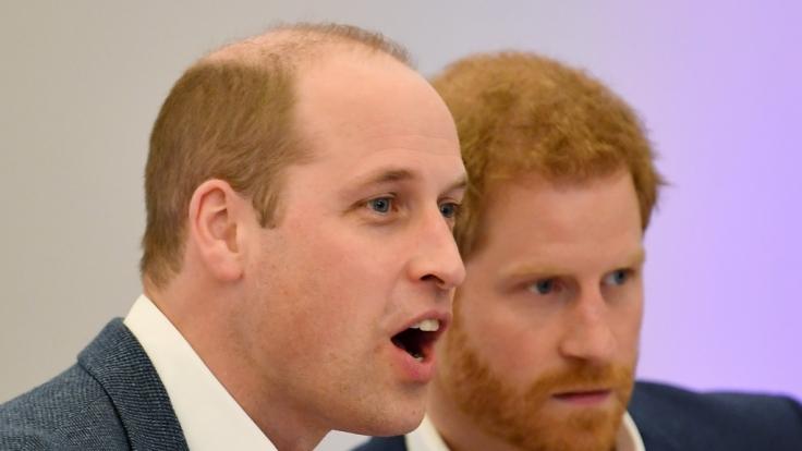 Schon gewusst? Zur Familie von Prinz William und Prinz Harry gehören noch weitere Geschwister. (Foto)