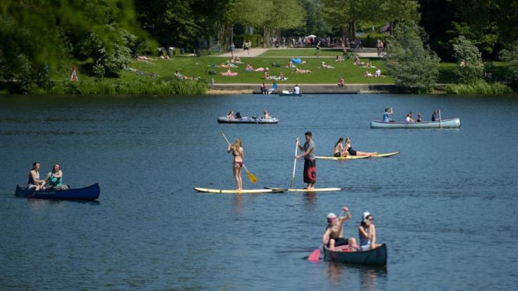 Stadtparksee in Hamburg: Mit den steigenden Temperaturen steigt die Gefahr durch Zerkarien in Badeseen. (Foto)